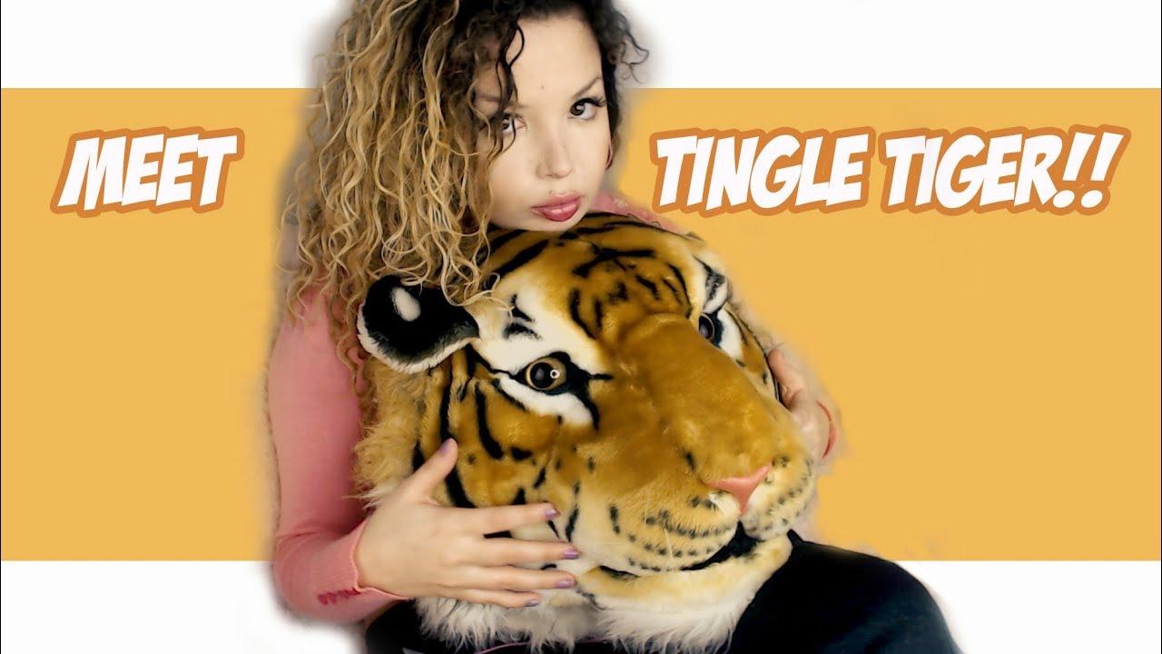 Asmr Soft Ear Licking Tiger Triggers Tingles Guaranteed