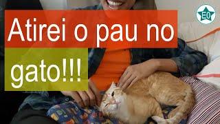 Atirei o pau no gato! | Esperanto do ZERO