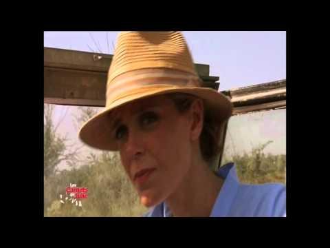 Le Mas des Grandes Cabanes du Vaccarès à la télévision
