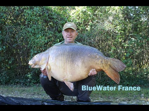 Carp Fishing - Bluewater Lakes, France - 70lbs (31.7kgs)