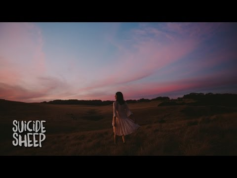 Wildes - Illuminate
