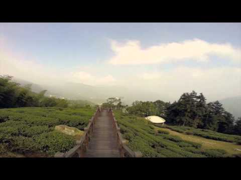 My Taiwan Tour - Alishan Mountain Tour - Beautiful scenery