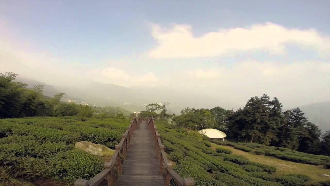 My Taiwan Tour – Alishan Mountain Tour – Beautiful scenery