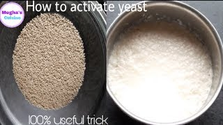 Activate yeast properly with a 100%useful trick: how to activate yeast properly easy trick in hindi.