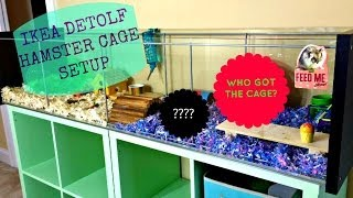 Ikea Detolf Hamster Cage Setup + {who Got The Cage?}