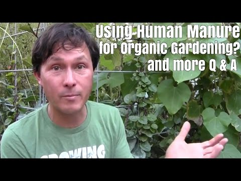 Using Human Manure for Organic Gardening and More Q&A