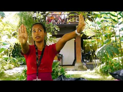 Balinese Dance Tutorial