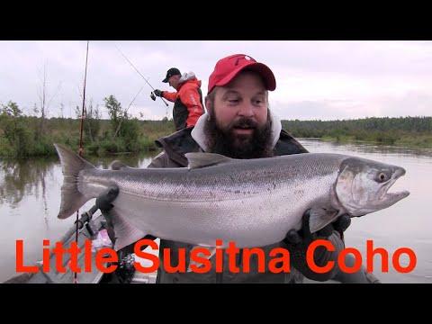 Little Susitna Coho Fishing