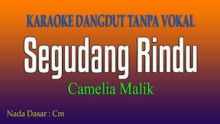 SEGUDANG RINDU Camelia Malik - Karaoke Tanpa Vokal