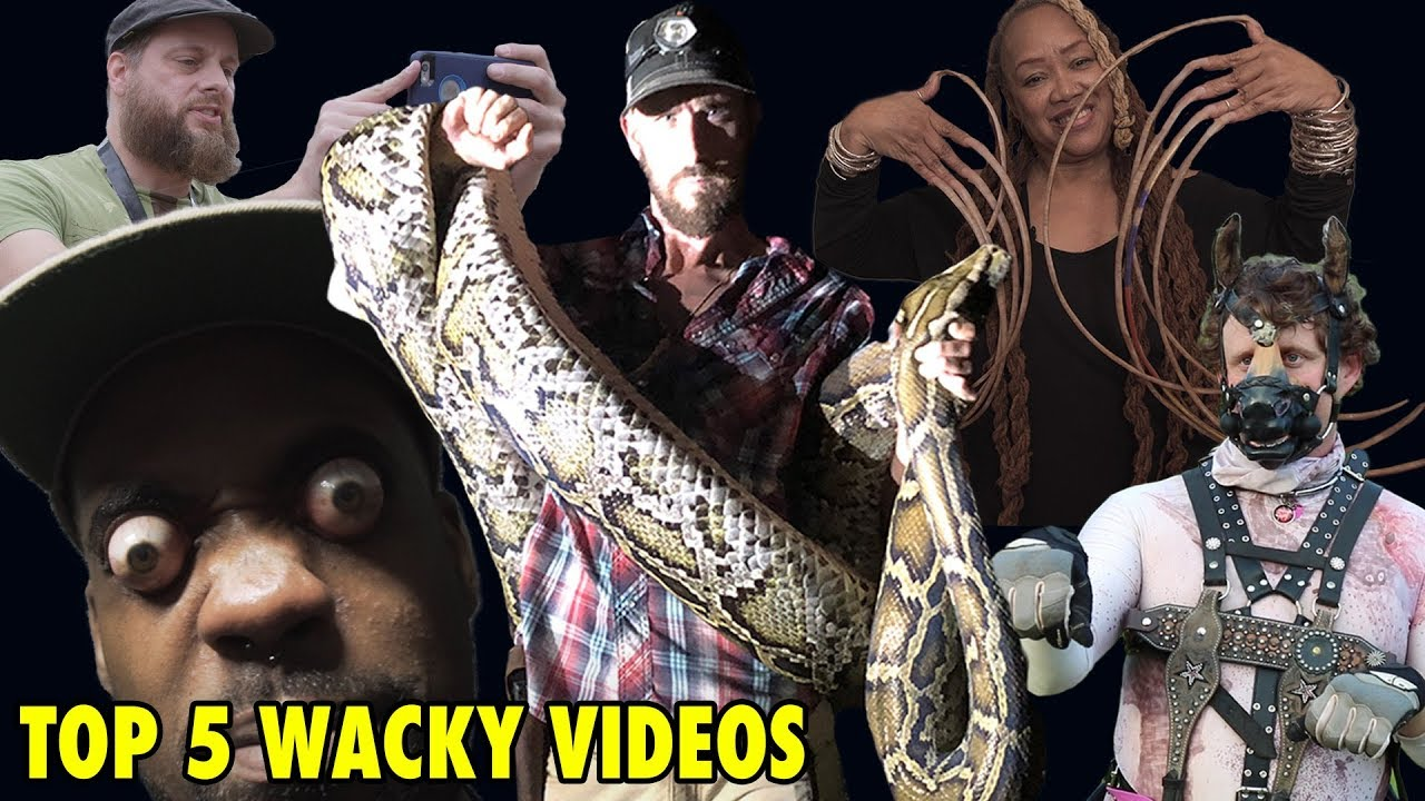 Top 5 Videos On Youtube With The Wizard Of Odd TV
