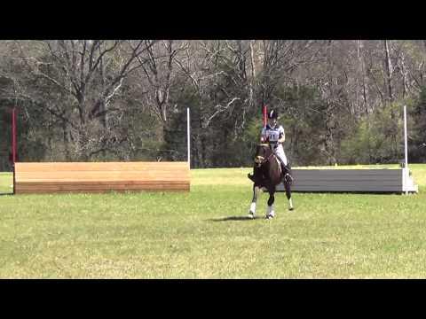Jo Beth Plauche & Arabella At Texas Rose Horse Park March Horse Trials 2014