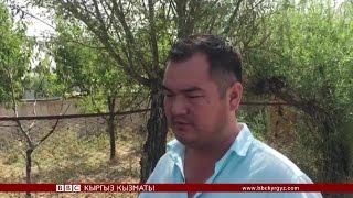 видео: Москвада каза тапкан кыздын жакындары - BBC Kyrgyz