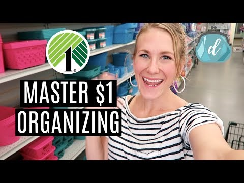 HOW I MASTERED DOLLAR TREE ORGANIZING (and You Can, Too!)