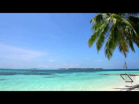 Relaxing Sounds of Waves - 2 Hours - Tropical Beach Relaxati