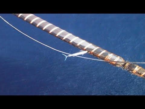 Swordfish Attacks BP Oilfield In Angola