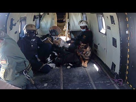 Los Guías Caninos de la Policía y el Ejército entrenan juntos para formar a sus canes