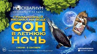 Мюзикл на воде «Сон в летнюю ночь»