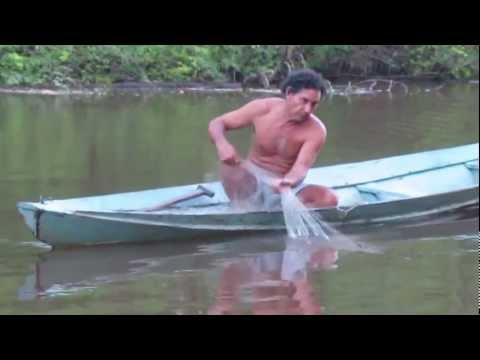 Rosario's Farm: Climate Adaptation in the Amazon