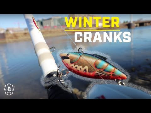 How To Fish Lipless Crankbaits For Winter Bass!