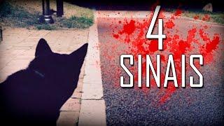 4 Sinais que seu animal está vendo um FANTASMA! thumbnail