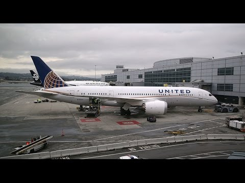 Seems like US airlines 'hate the American people' – US congressman