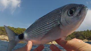 Pêche en float tube à Cavalaire-sur-mer