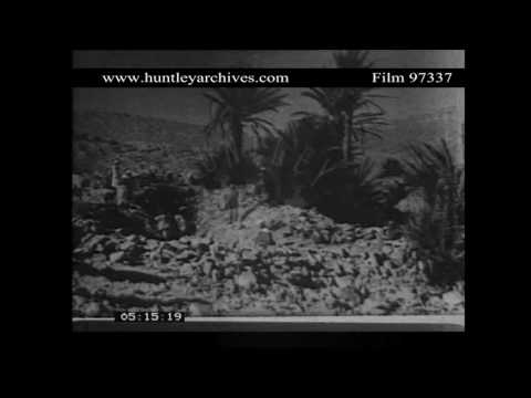 North Africa.  Irrigation.  Archive film 97337