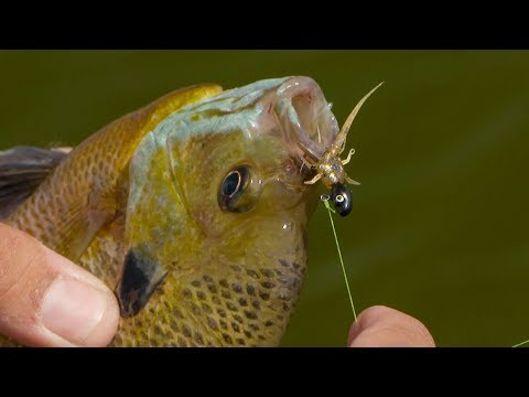 Tips For Fishing Bluegill With Soft Plastics