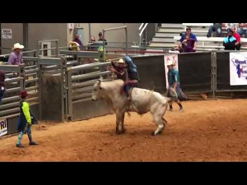 Brazos Valley Fair and Rodeo October 2017