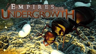 Rise of the Ant Emperor! - Black Ant Colony - Empires of the Undergrowth Gameplay thumbnail