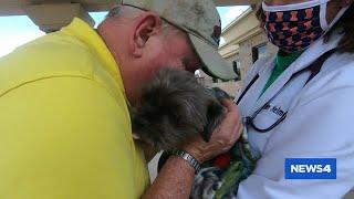 Dog missing after Collinsville crash reunited with owner