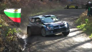 Wales Rally GB 2015 - Shakedown [HD]