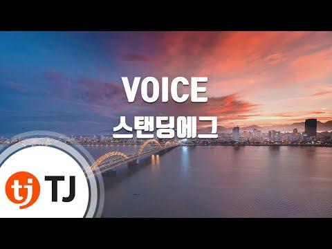 [TJ노래방] VOICE - 스탠딩에그 / TJ Karaoke