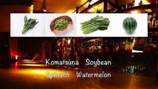 【おしゃれ野菜】のがっち 「野菜ボサノバ〜花言葉とともに」Music Video - English sub.【Vegetable Bossa】