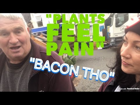 STREET INTERVIEWS WITH MEAT EATERS