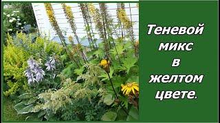 видео Цветники в саду: миксбордер