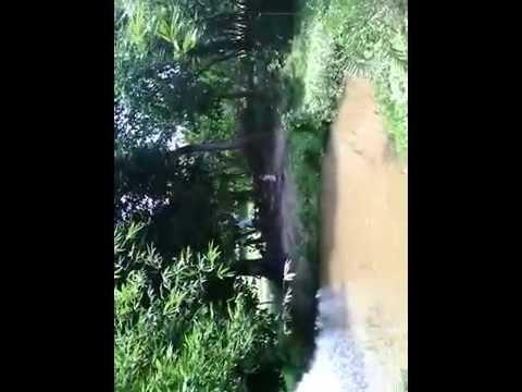 Fun in Countryside, Adamdighi, Bogra,