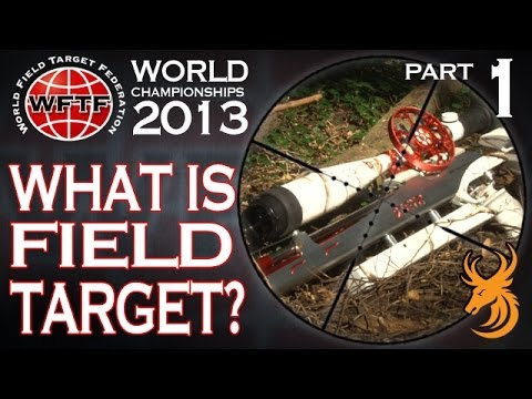 What is Airgun Field Target?