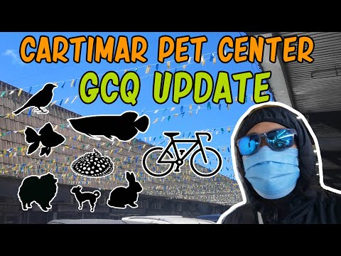 Cartimar Pet Center Update After Metro Manila Lockdown