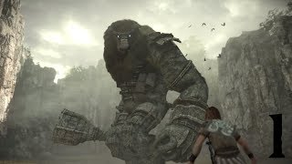 Shadow Of The Colossus #1 Dormin...