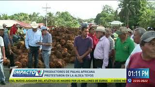 Productores de Palma africana protestaron en Aldea Toyos
