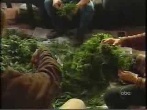 Peter Jennings Pot of Gold (3-7-1997)
