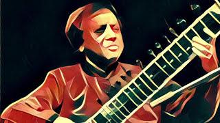 Ustad Shahid Parvez Khan - RAAG BAGESHREE