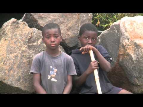 République du Congo : sur le Chemin des Volon'Terre