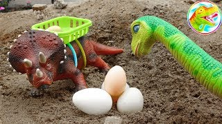 Lost Dinosaur Egg - Jurassic World | Brachiosaurus | Video For Kids - G225C ToyTV