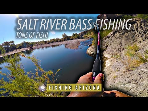 BASS FISHING THE LOWER SALT RIVER FOR THE FIRST TIME | GoPro