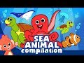 Learn Sea Animals for Kids | Ocean animal cartoon compilation | Club Baboo