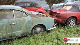 Junkyard: VW Karmann Ghia, Beetles, Type 3 Wagons, and MORE!