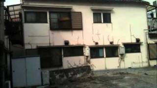 東日本大震災 各地の揺れの様子
