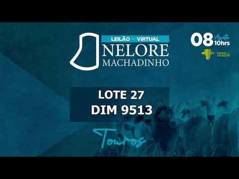 LOTE 27 DIM 9513